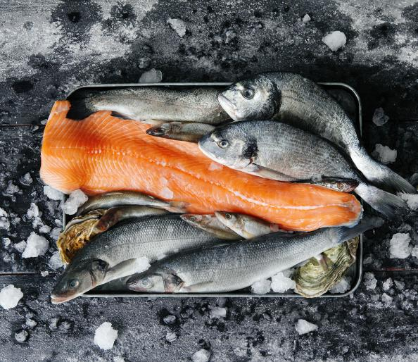 The best ways to freeze and thaw meat and fish mens fitness for Best way to freeze fish