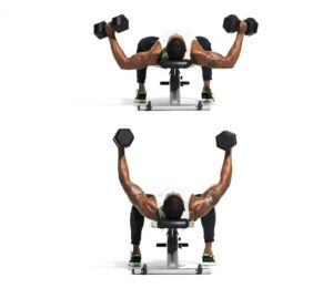 dumbbell-half-flye-the-simple-trick-to-build-pecs-in-4-wweeks-